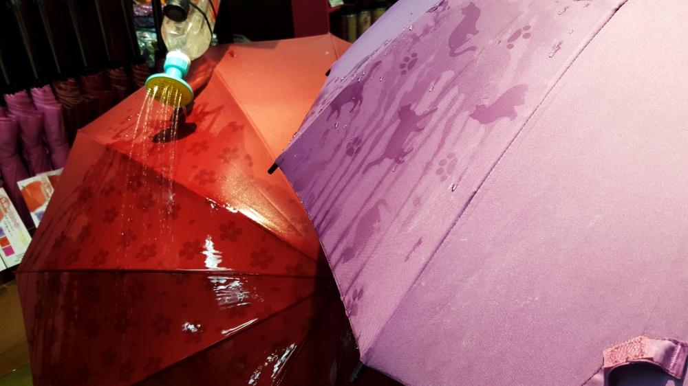 13 inovatii - umbrela